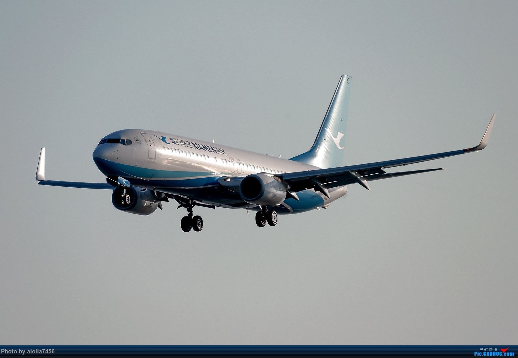 Re:[原创]【福州飞友会】【合肥飞友会】最最难忘的FOC的那一抹蓝 BOEING 737-800 B-1911 中国福州长乐国际机场