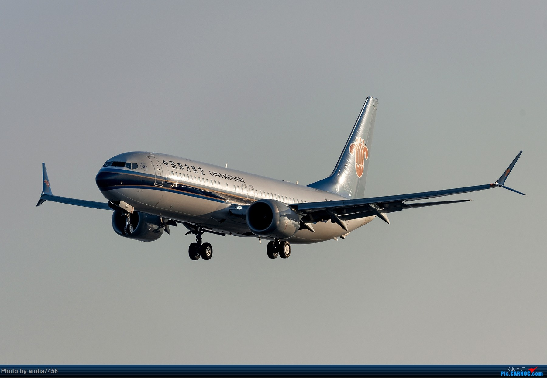 Re:[原创]【福州飞友会】【合肥飞友会】最最难忘的FOC的那一抹蓝 BOEING 737MAX-8 B-1207 中国福州长乐国际机场