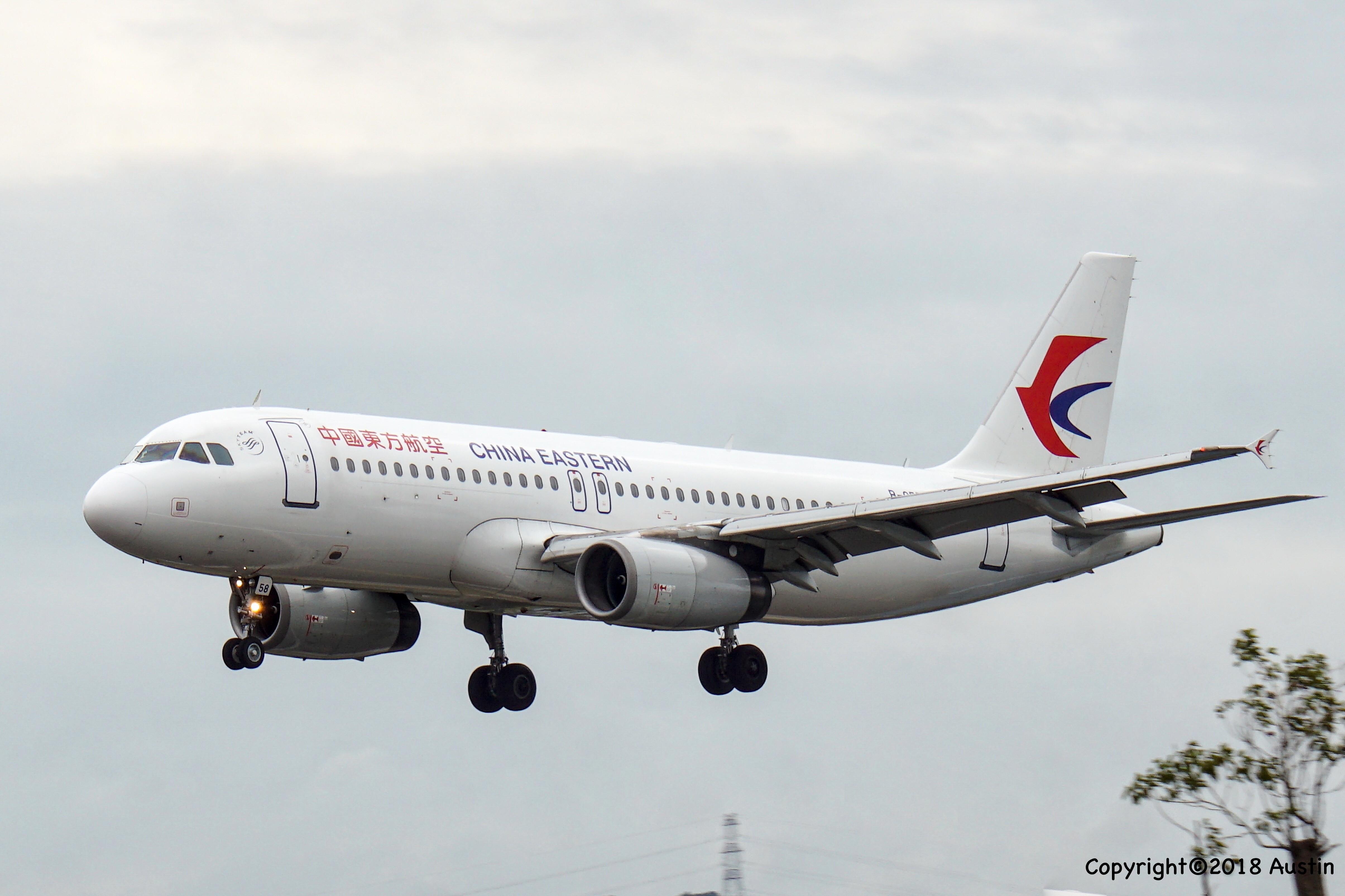 Re:[原创][XMN]接熊猫啦~part 1 AIRBUS A320-232 B-6558 中国厦门高崎国际机场