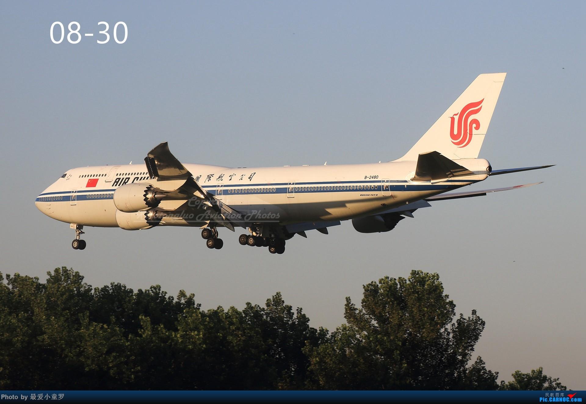 Re:[原创]年底交作业——小童罗的2018年拍机总结 BOEING 747-8I B-2480 中国北京首都国际机场