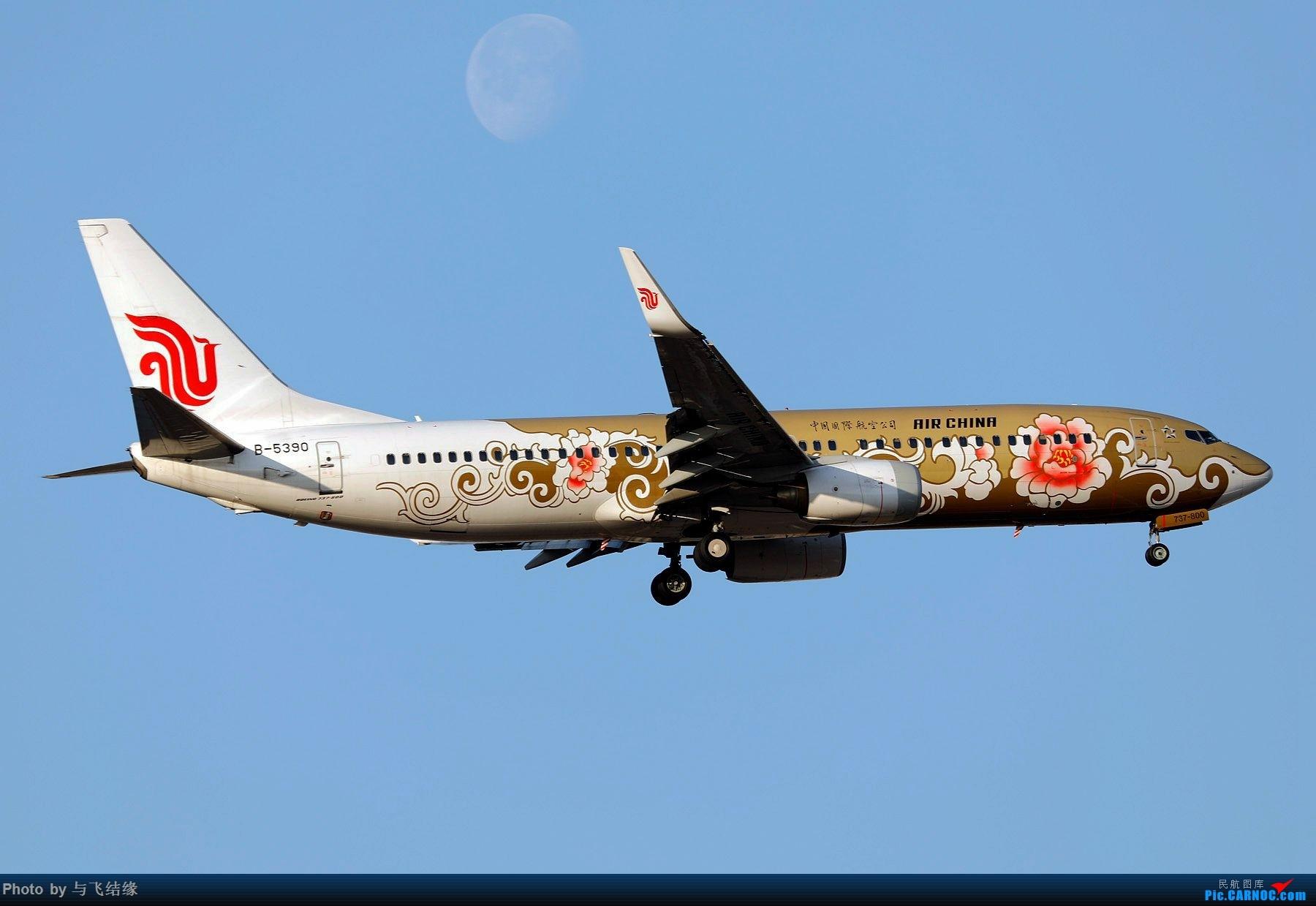 Re:[原创]今日是周末,月末,年末2018年最后一贴,预祝朋友们2019年新年快乐!万事如意! BOEING 737-800 B-5390 中国北京首都国际机场