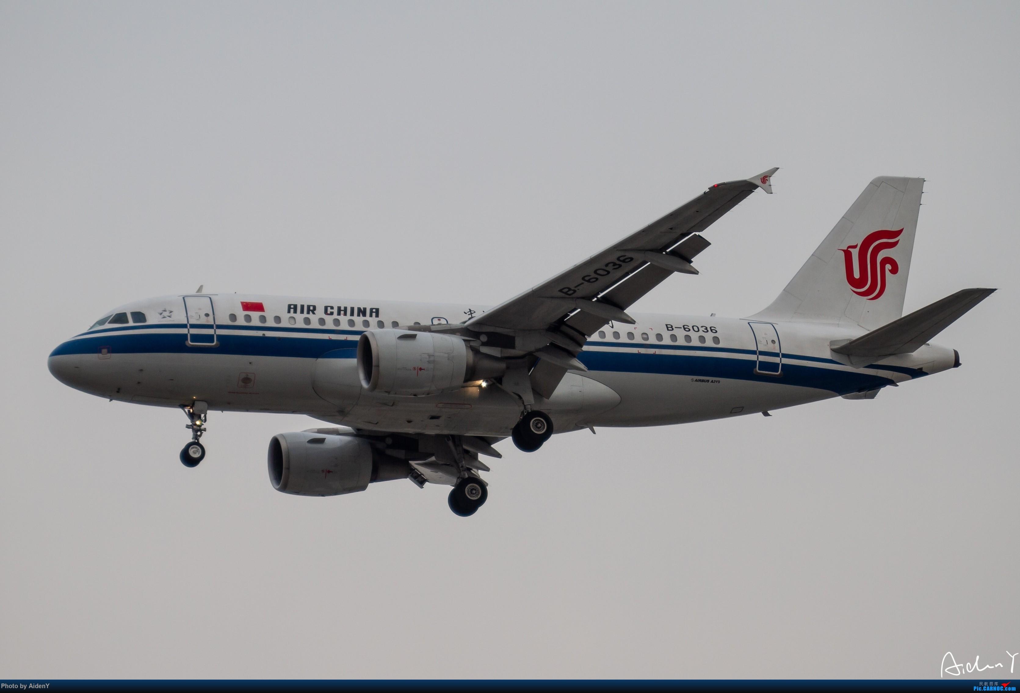 Re:2018/12/31——首都机场水泥蓝天作业——祝众飞友新年快乐! AIRBUS A319-100 B-6036 中国北京首都国际机场