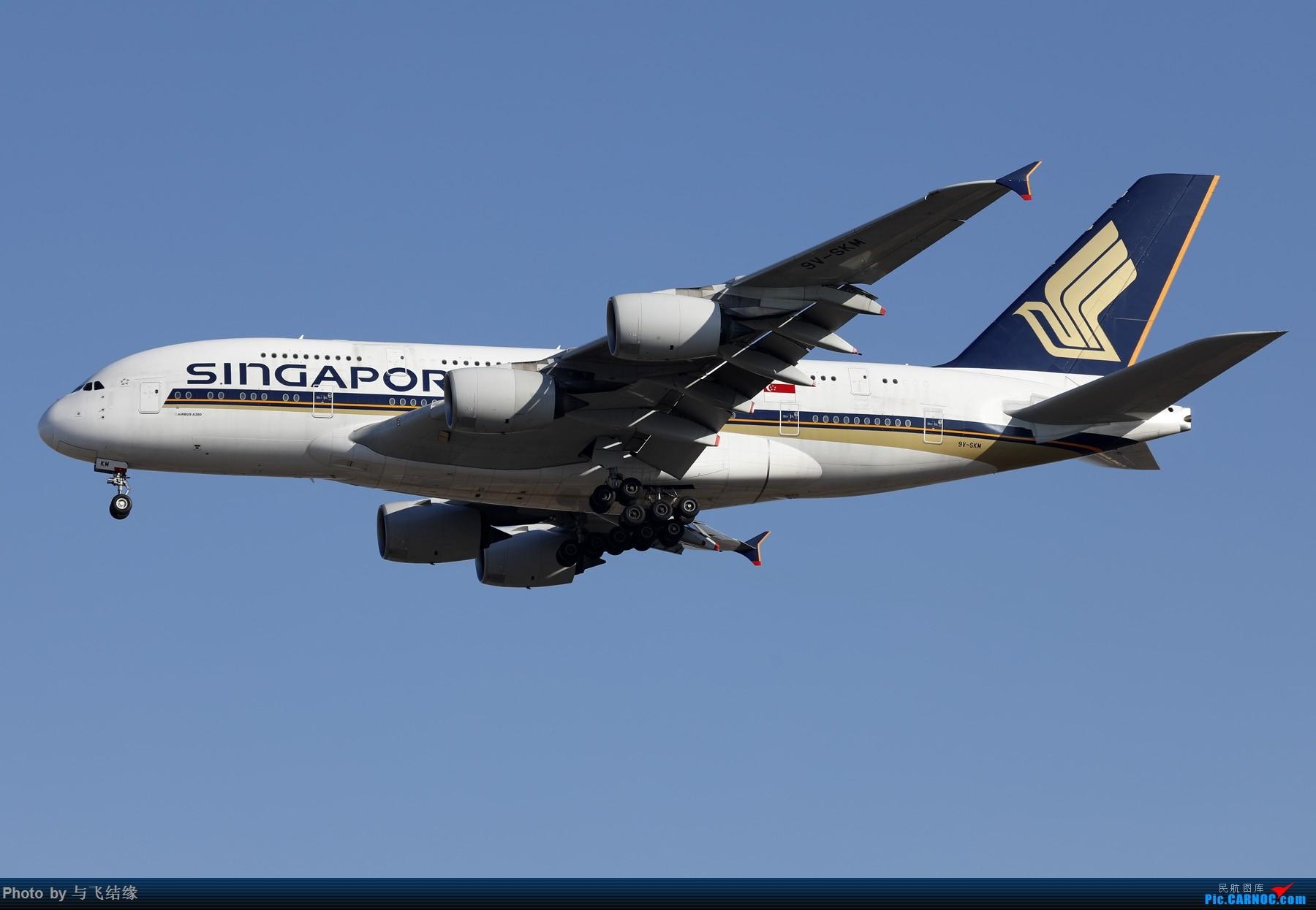 Re:[原创]近期的几张图,以空客为主吧。 AIRBUS A380-800 9V-SKM 中国北京首都国际机场