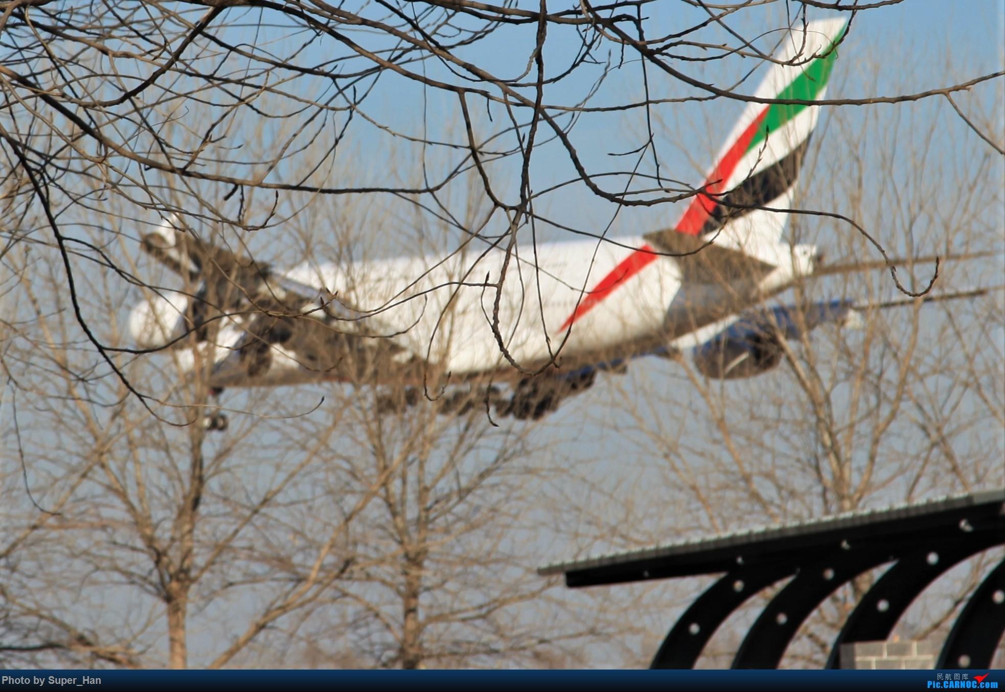 Re:[原创]1月17日PEK AIRBUS A380 A6-EOI 中国北京首都国际机场