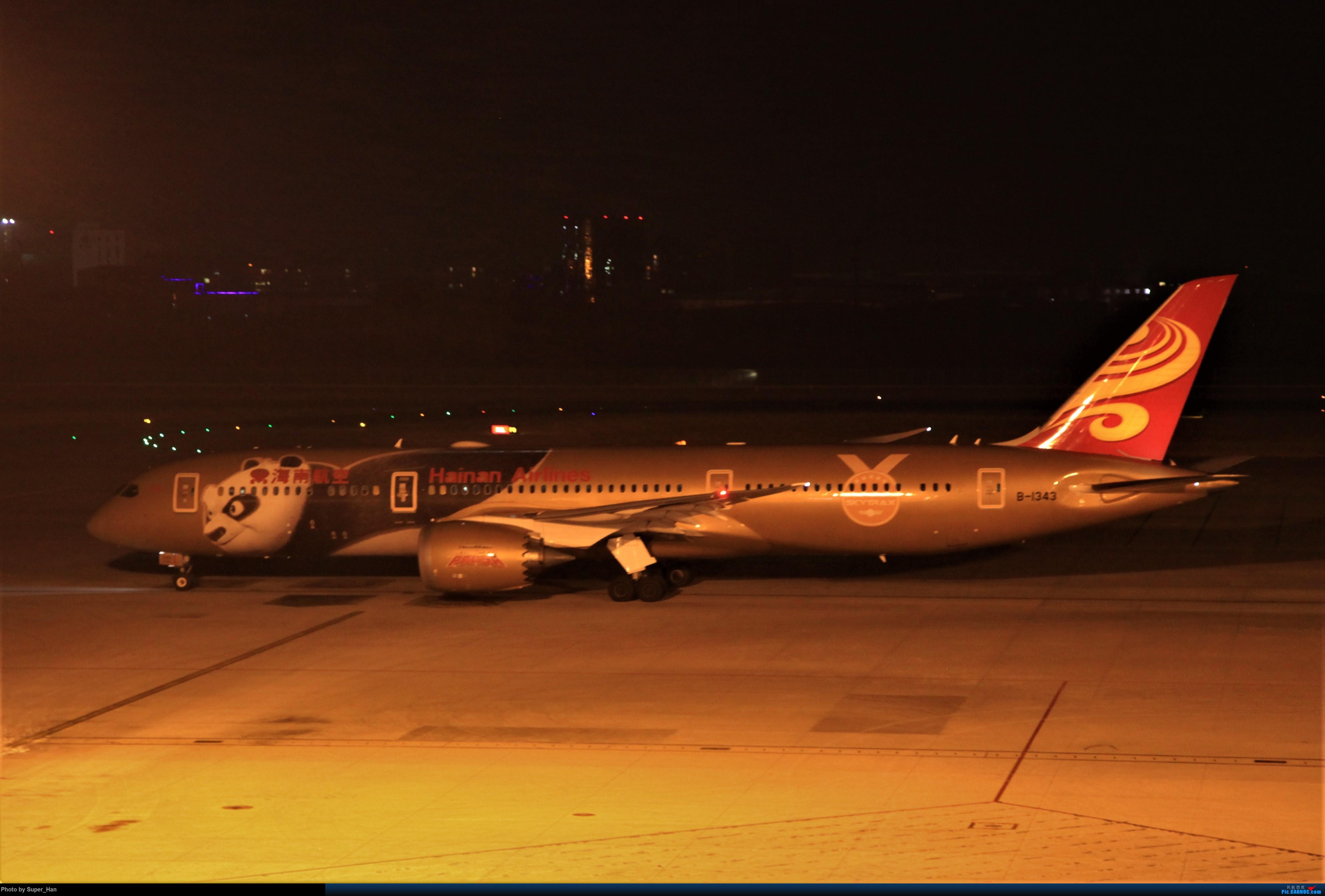 Re:[原创]1月17日PEK东跑道T3东停一组 BOEING 787-9 B-1343 中国北京首都国际机场