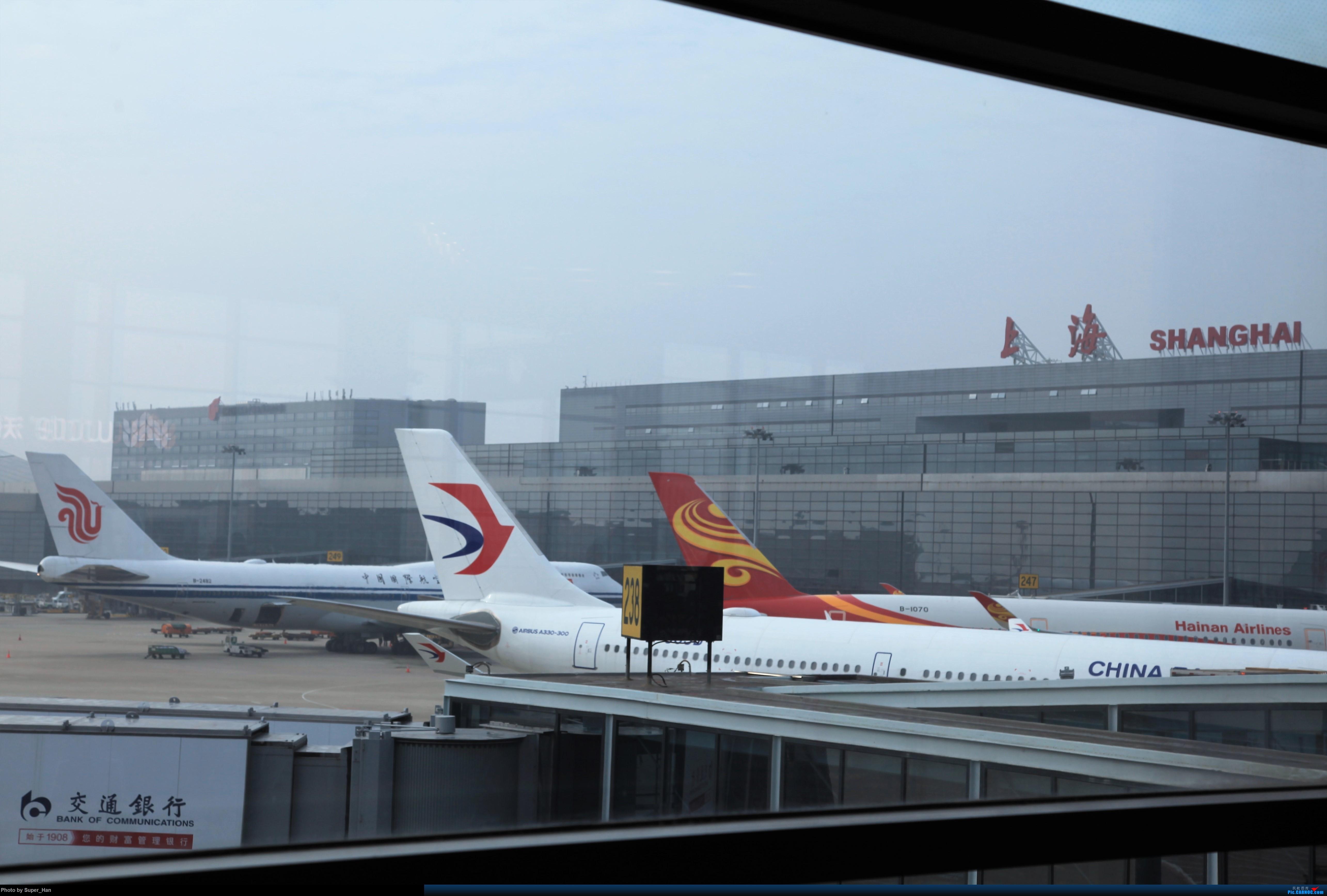 Re:[原创]2019虹桥出发飞北京第一拍   中国上海虹桥国际机场 中国上海虹桥国际机场