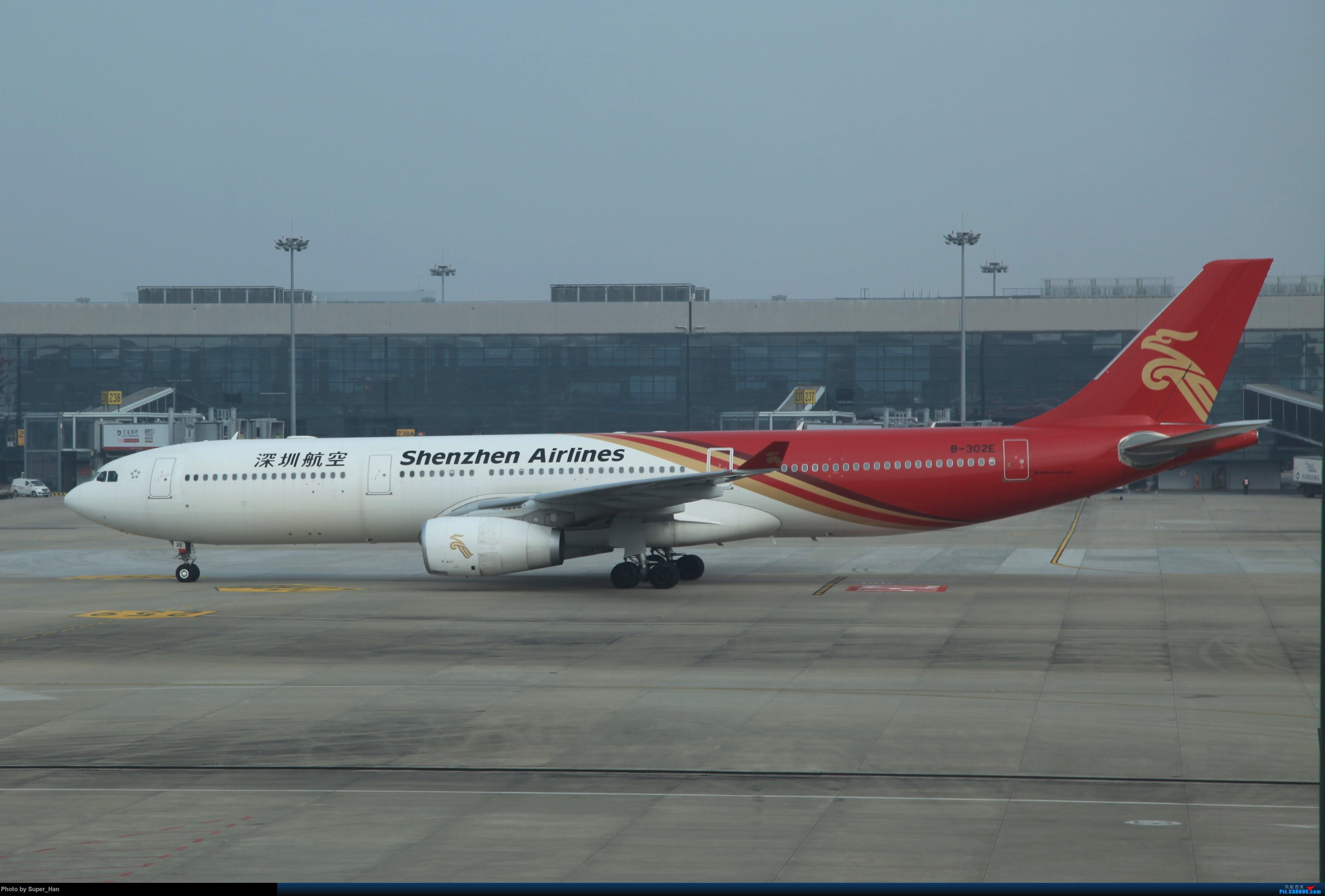 Re:[原创]2019虹桥出发飞北京第一拍 AIRBUS A330-300 B-302E 中国上海虹桥国际机场
