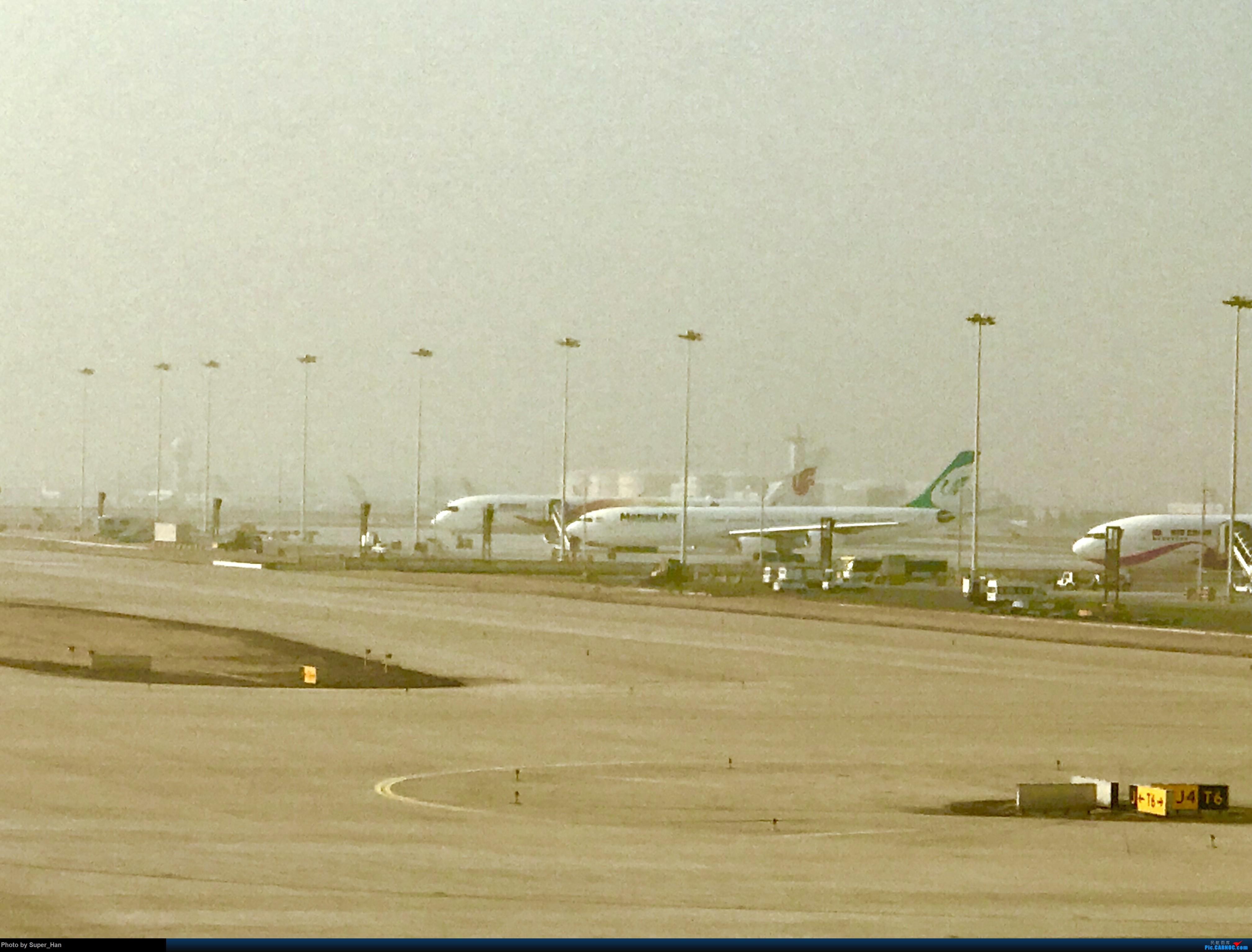 Re:[原创]2019虹桥出发飞北京第一拍 AIRBUS A340-313X EP-MMD 中国北京首都国际机场