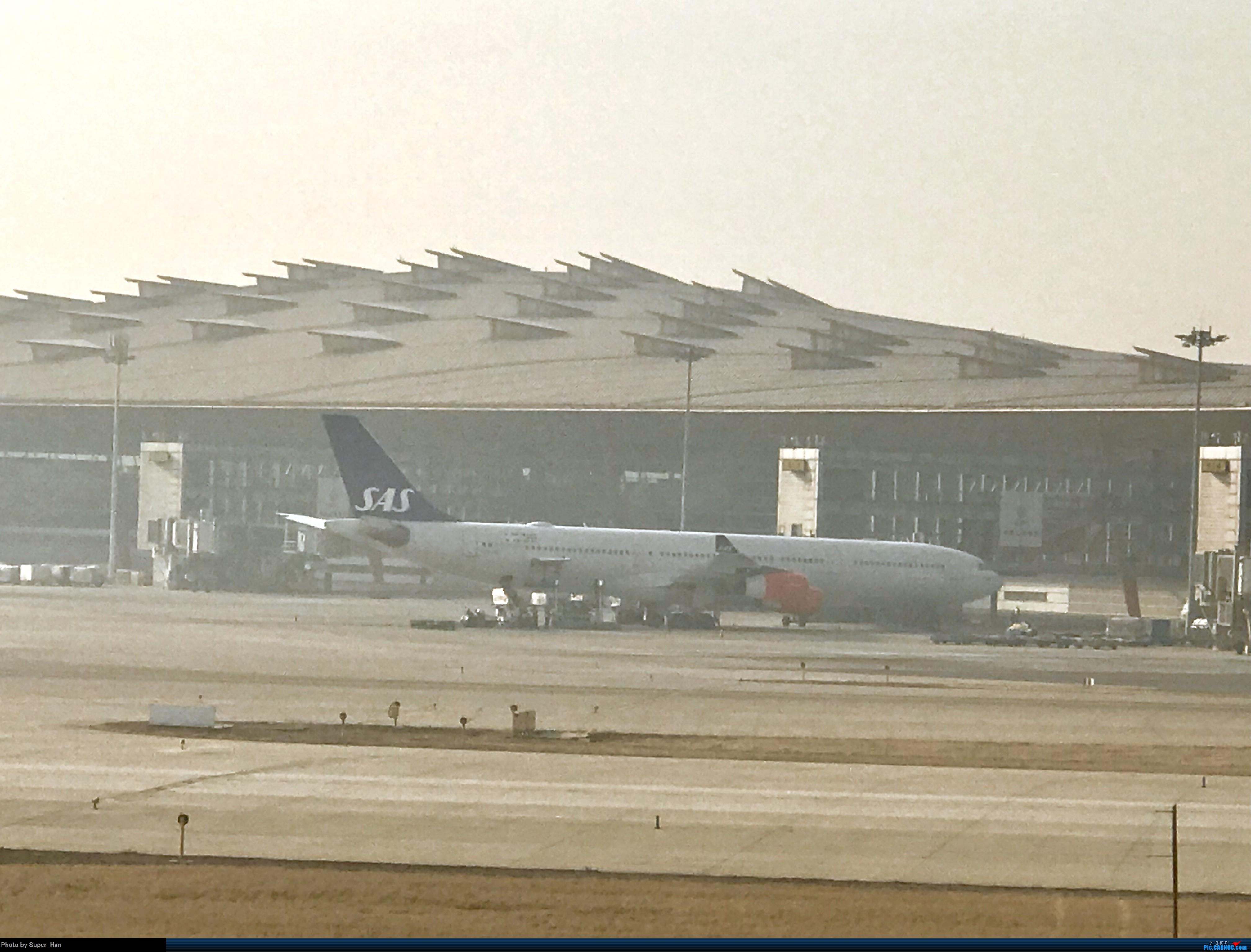 Re:[原创]2019虹桥出发飞北京第一拍 AIRBUS A340-313X OYKBD 中国北京首都国际机场