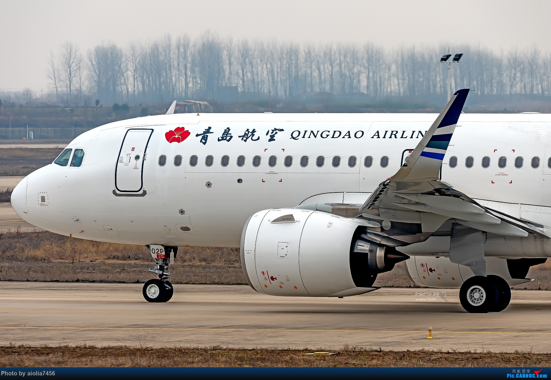 Re:[原创]【合肥飞友会】记述小确幸的霸都新桥,和记述着这些小确幸的霸都飞友 AIRBUS A320NEO B-302P 中国合肥新桥国际机场