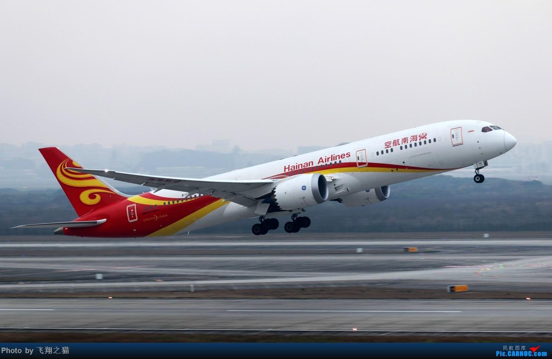 Re:[原创]CKG拍机(2019春运拍机之一) BOEING 787-9 B-1132 重庆江北国际机场