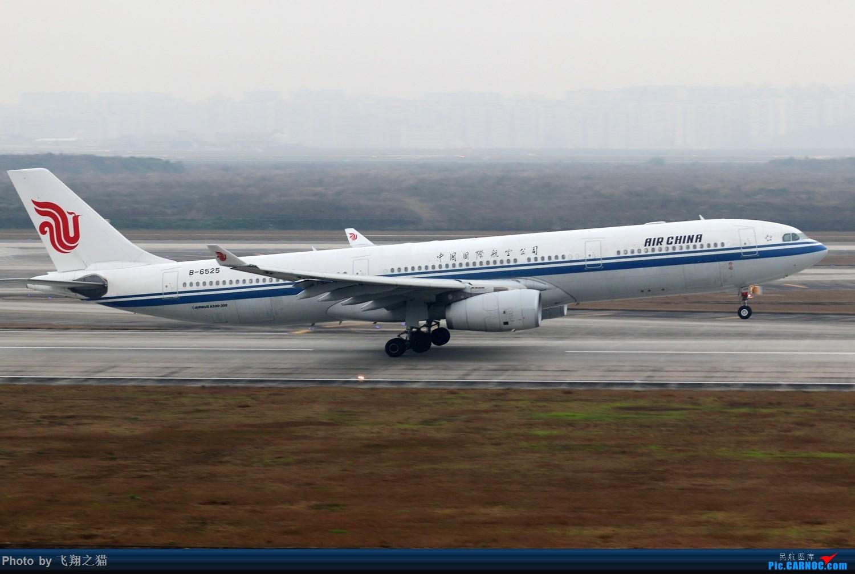 Re:[原创]CKG拍机(2019春运拍机之一) AIRBUS A330-300 B-6525 重庆江北国际机场