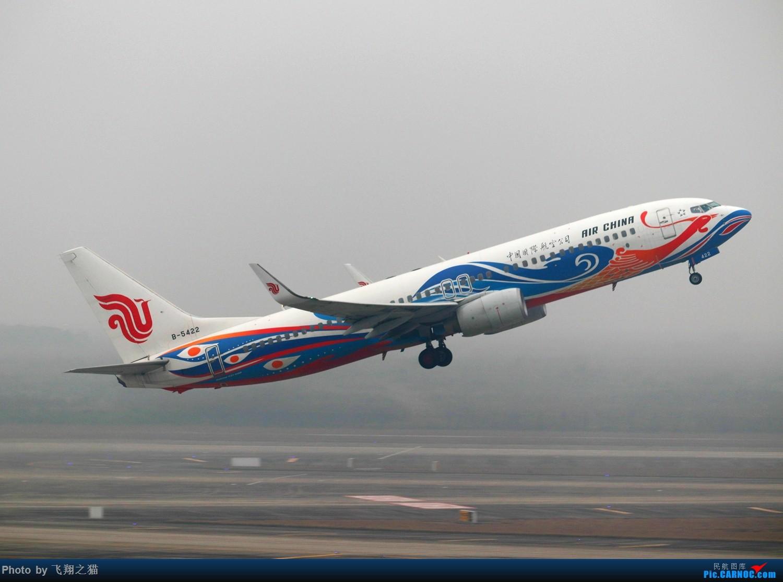 Re:[原创]CKG拍机(2019春运拍机之一) BOEING 737-800 B-5422 重庆江北国际机场
