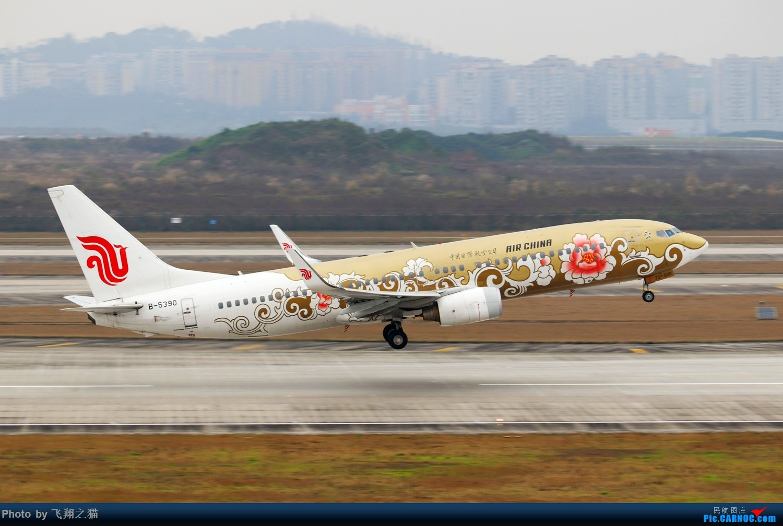 Re:[原创]CKG拍机(2019春运拍机之一) BOEING 737-800 B-5390 重庆江北国际机场