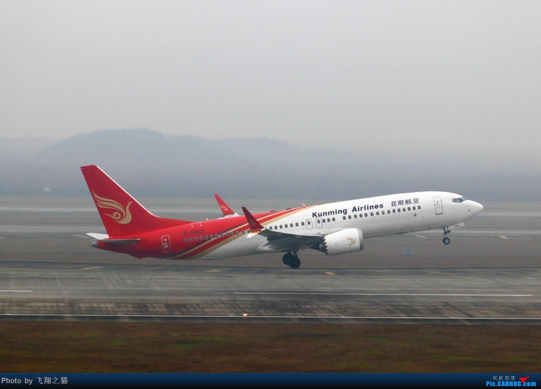 Re:[原创]CKG拍机(2019春运拍机之一) BOEING 737MAX-8 B-206Z 重庆江北国际机场