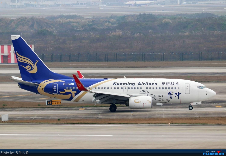 Re:[原创]CKG拍机(2019春运拍机之一) BOEING 737-700 B-1461 重庆江北国际机场