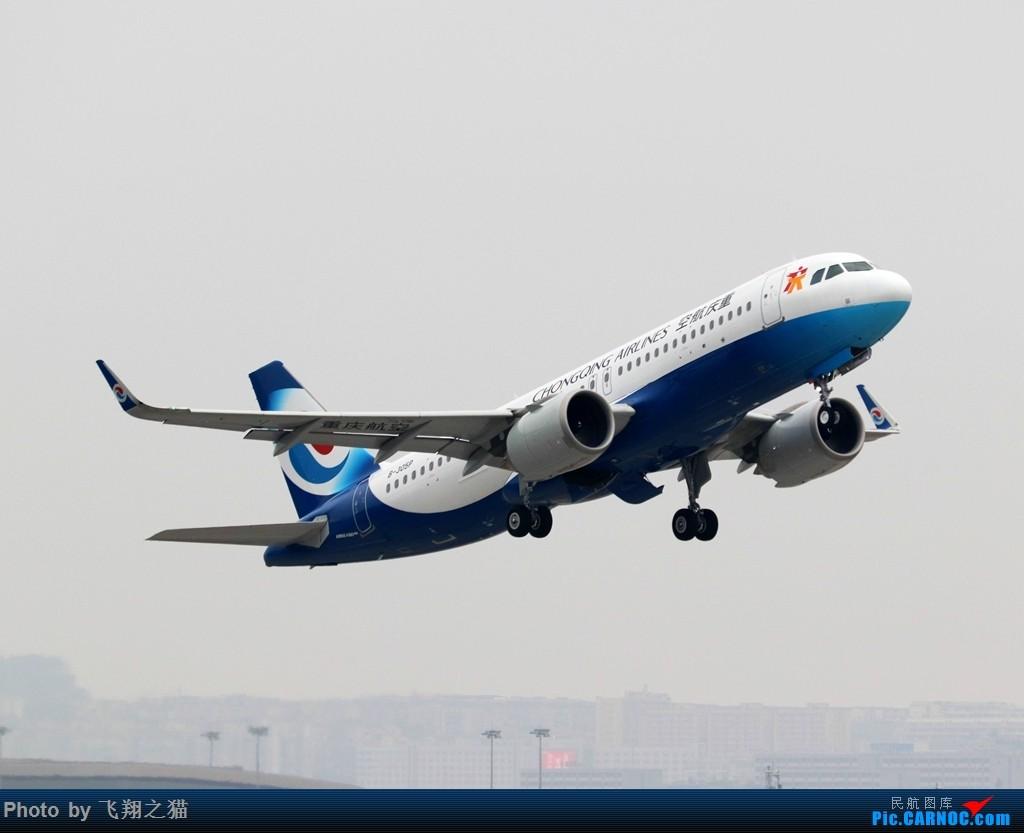 Re:CKG拍机(2019春运拍机之一) AIRBUS A320NEO B-305P 重庆江北国际机场