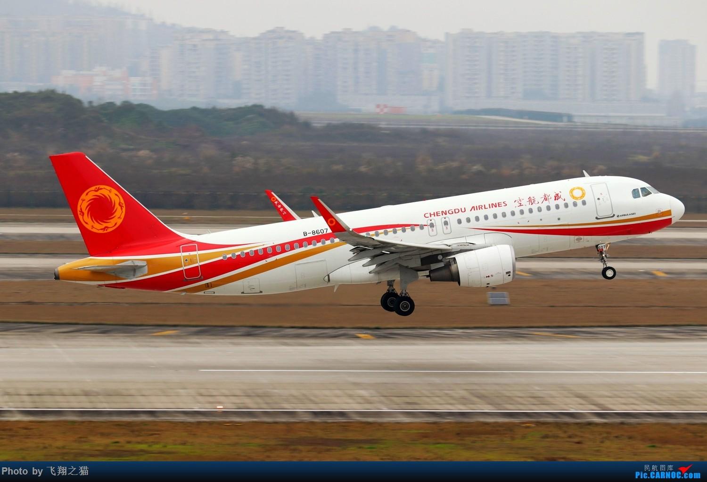 Re:[原创]CKG拍机(2019春运拍机之一) AIRBUS A320-200 B-8607 重庆江北国际机场