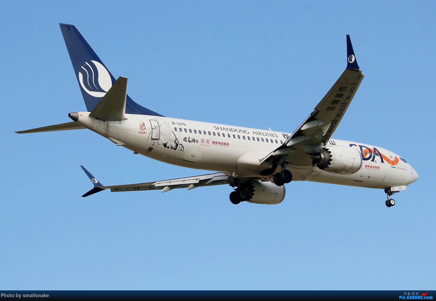 Re:[原创]机压图,CAN拍机... BOEING 737MAX-8 B-1275 广州白云国际机场