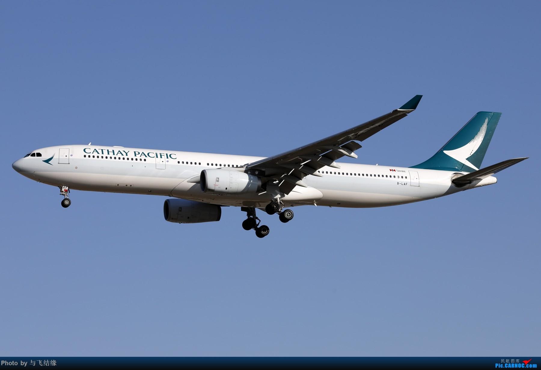 """Re:[原创]农历三十再发一贴,祝朋友们新年""""猪""""事顺利,吉祥如意! AIRBUS A330-300 B-LAF 中国北京首都国际机场"""