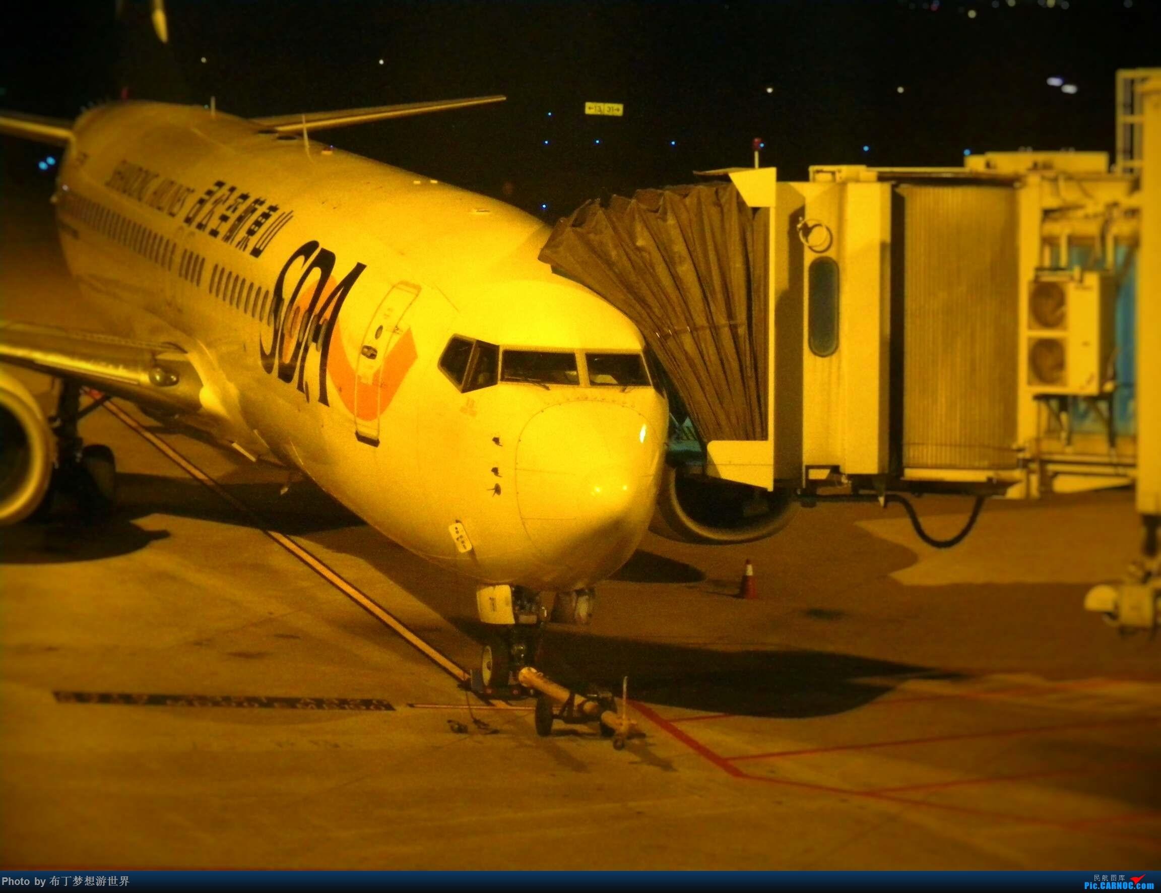 [原创]傻蛋航空 BOEING 737-800 B-7979 中国宁波栎社国际机场