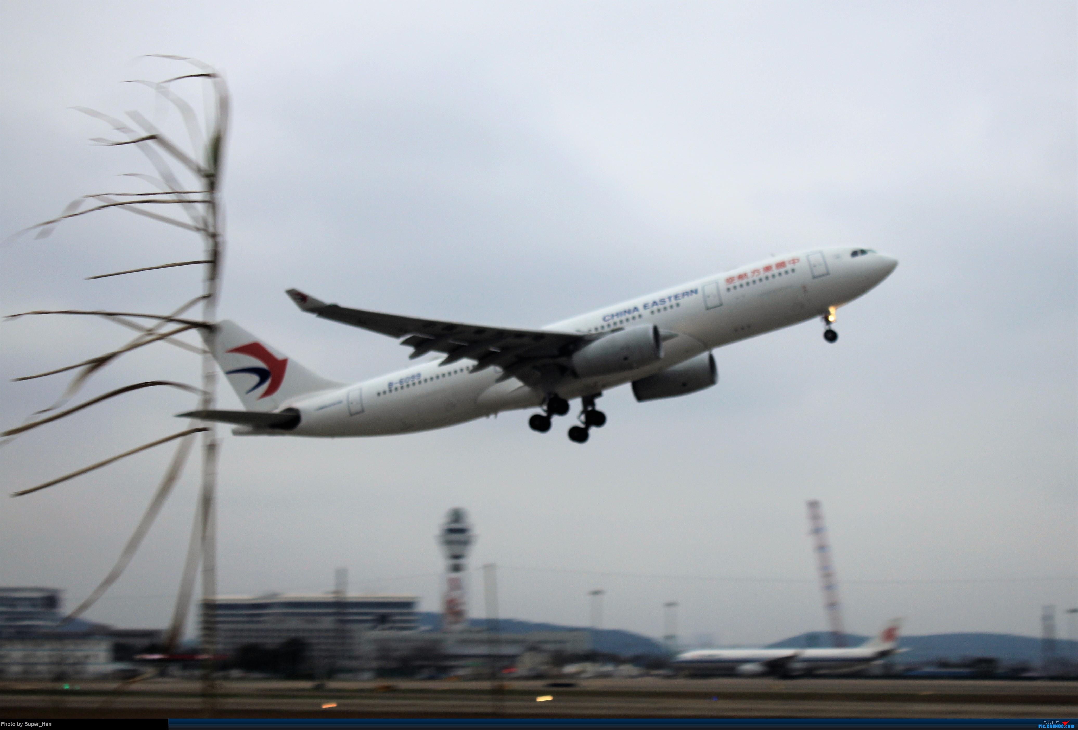 Re:[原创]0208HGH转悠 AIRBUS A330-200 B-6099 中国杭州萧山国际机场
