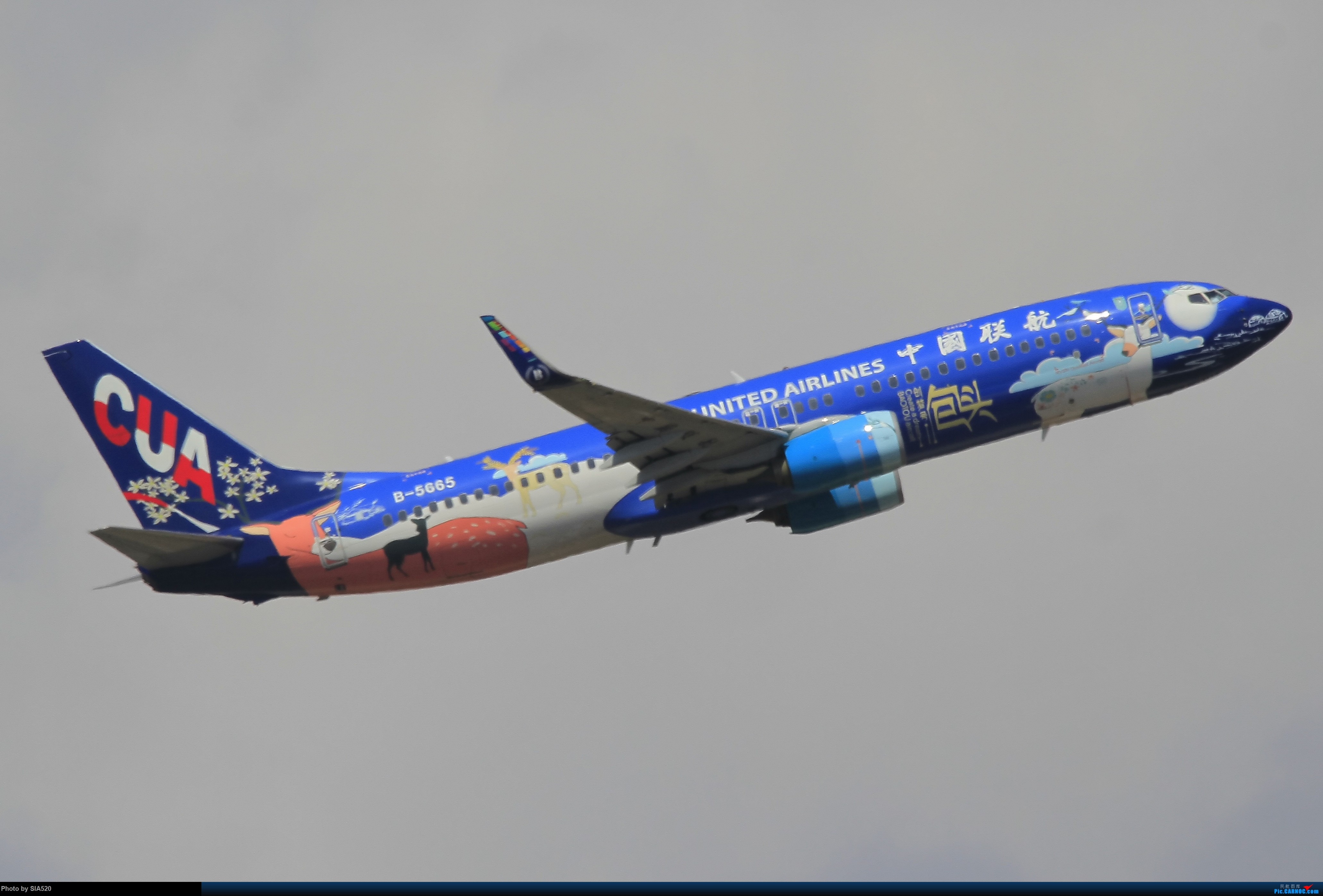 Re:[原创]北京人儿在三亚—600mm解锁凤凰 BOEING 737-800 B-5665 中国三亚凤凰国际机场