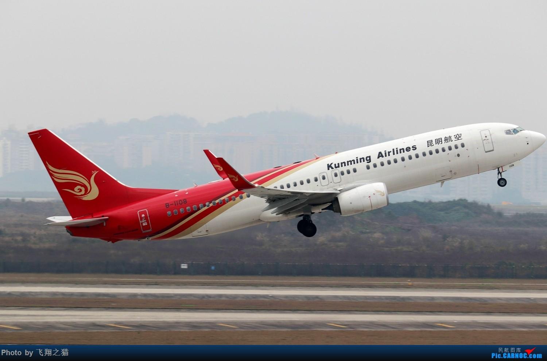 Re:[原创]CKG拍机(2019春运拍机之二) BOEING 737-800 B-1108 重庆江北国际机场