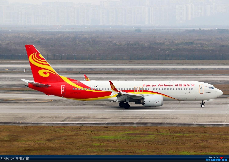 Re:[原创]CKG拍机(2019春运拍机之二) BOEING 737MAX-8 B-1390 重庆江北国际机场