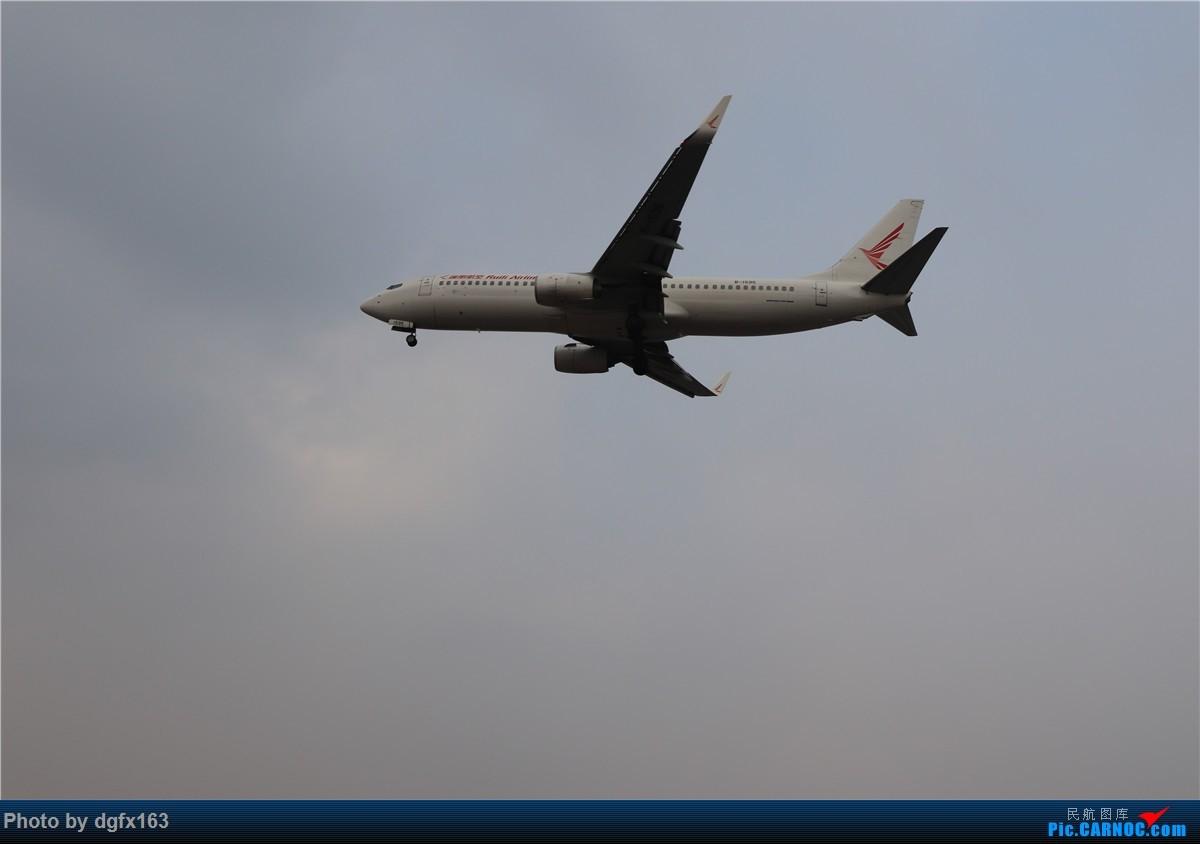 Re:[原创]【dgfx163的拍机(4)】初七宜拍机 DLC28跑道头一组 烂天图不多 BOEING 737-800 B-1595 中国大连国际机场