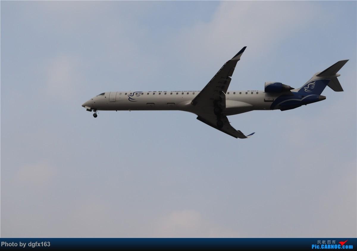 Re:[原创]【dgfx163的拍机(4)】初七宜拍机 DLC28跑道头一组 烂天图不多 BOMBARDIER CRJ900NG B-3377 中国大连国际机场