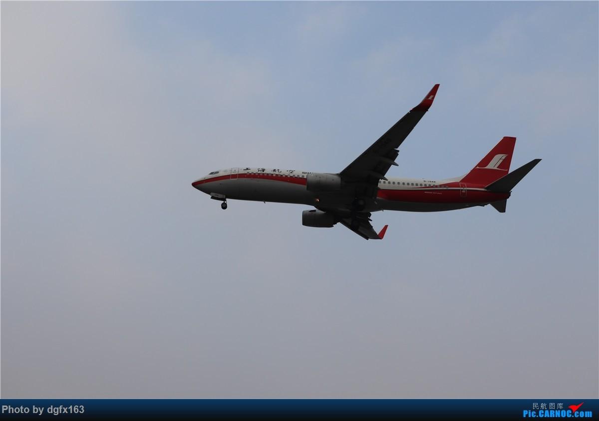 Re:[原创]【dgfx163的拍机(4)】初七宜拍机 DLC28跑道头一组 烂天图不多 BOEING 737-800 B-1948 中国大连国际机场