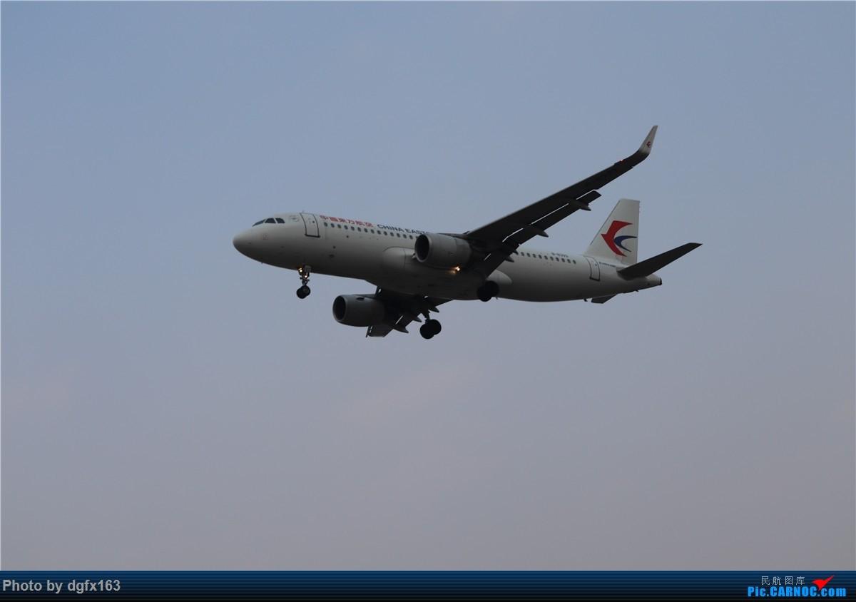 Re:[原创]【dgfx163的拍机(4)】初七宜拍机 DLC28跑道头一组 烂天图不多 AIRBUS A320-200 B-8393 中国大连国际机场
