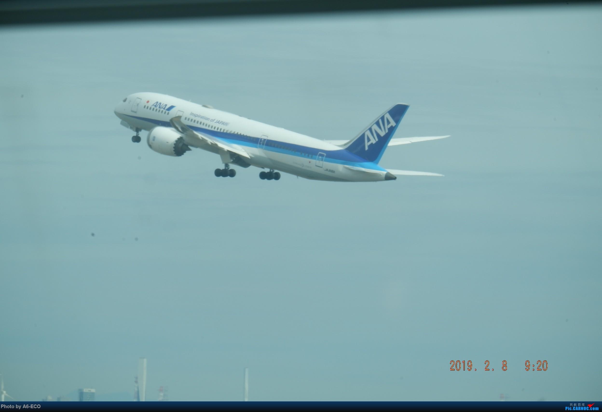 Re:[原创]HND内场,@henrish @Skyteam123 BOEING 787-8 JA816A 日本东京羽田国际机场