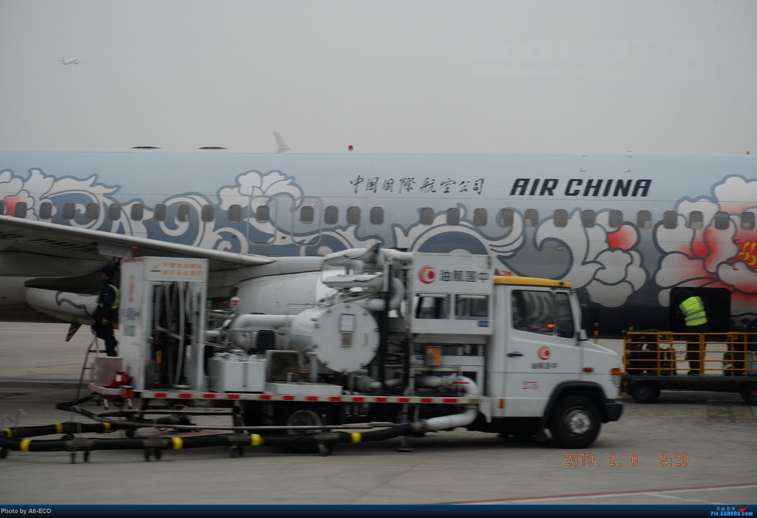 Re:[原创]#Siri旅行003#pek-nrt,繁华的东京 BOEING 737-800 B-5176 中国北京首都国际机场