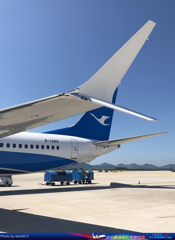 [原创]【B737-8M】蓝天白云中体验厦航737MAX8 NKG-XMN 有起降高清视频 BOEING 737MAX-8 B-1289 中国南京禄口国际机场