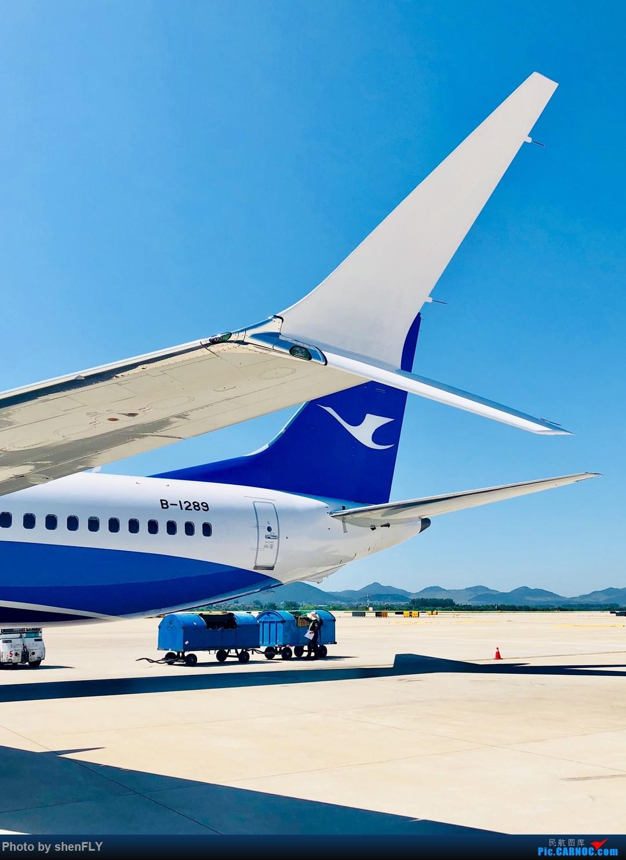 Re:[原创]【B737-8M】蓝天白云中体验厦航737MAX8 NKG-XMN 有起降高清视频 BOEING 737MAX-8 B-1289 中国南京禄口国际机场