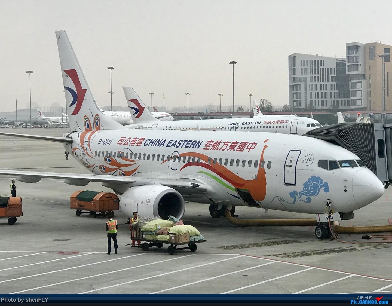 [原创]【孔雀彩绘73G】NKG-KMG A332 C舱 & LJG-SHA B73G 孔雀彩绘 BOEING 737-700 B-6141 中国上海虹桥国际机场