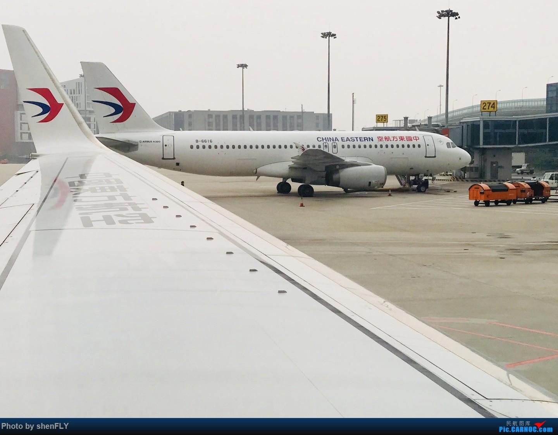 Re:[原创]【孔雀彩绘73G】NKG-KMG A332 C舱 & LJG-SHA B73G 孔雀彩绘 AIRBUS A320-200 B-6616 中国上海虹桥国际机场