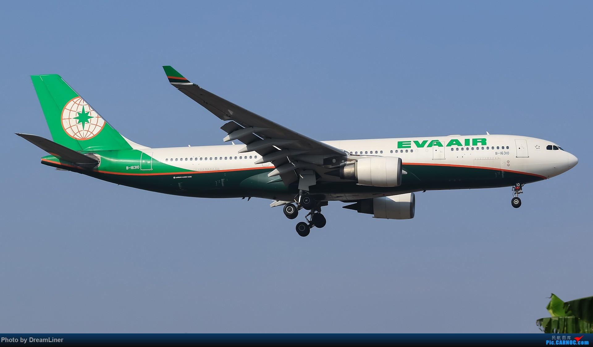 Re:[原创]【CAN】失踪人口回归 AIRBUS A330-200 B-16310 中国广州白云国际机场