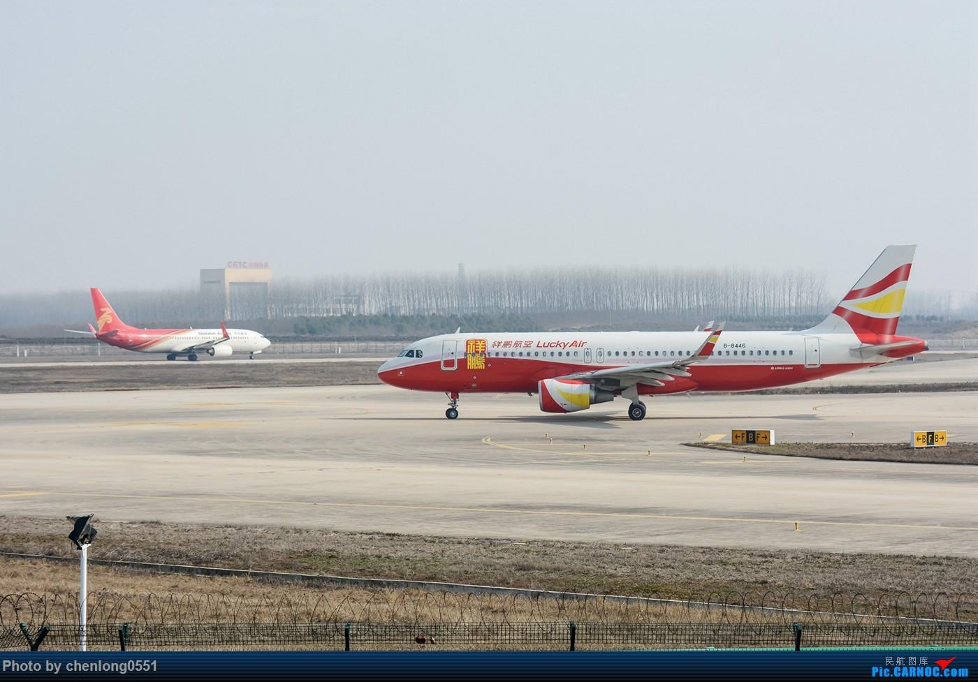 Re:【合肥飞友会·霸都打机队】好久好久没发图了,发几个19年年会的照片,几乎都是没见过的机 AIRBUS A320-200 B-8446 中国合肥新桥国际机场