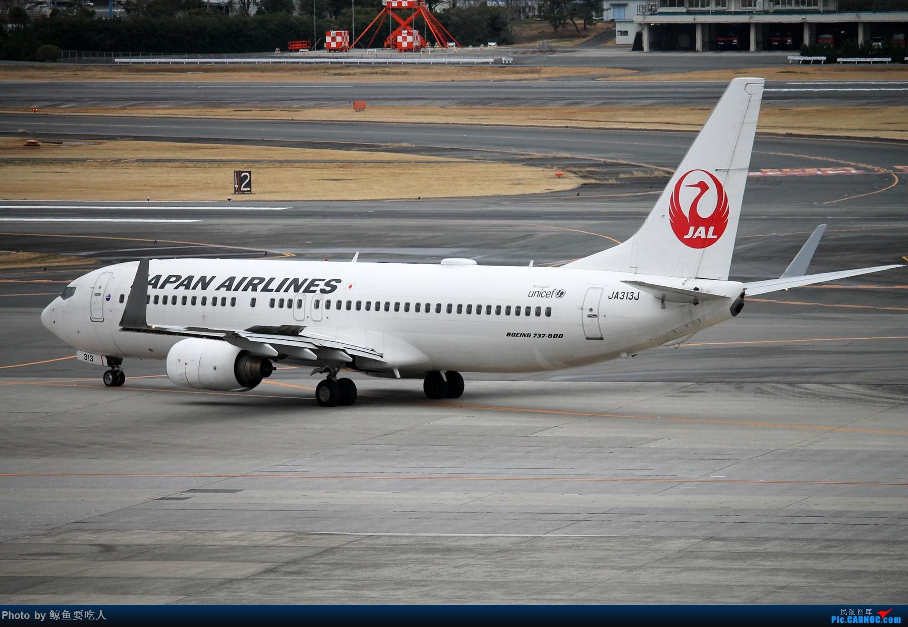 Re:[原创]1800*1200 【ITM】【KIX】日本关西五日自由行,大阪+京都+奈良 BOEING 737-800 JA313J 日本伊丹机场