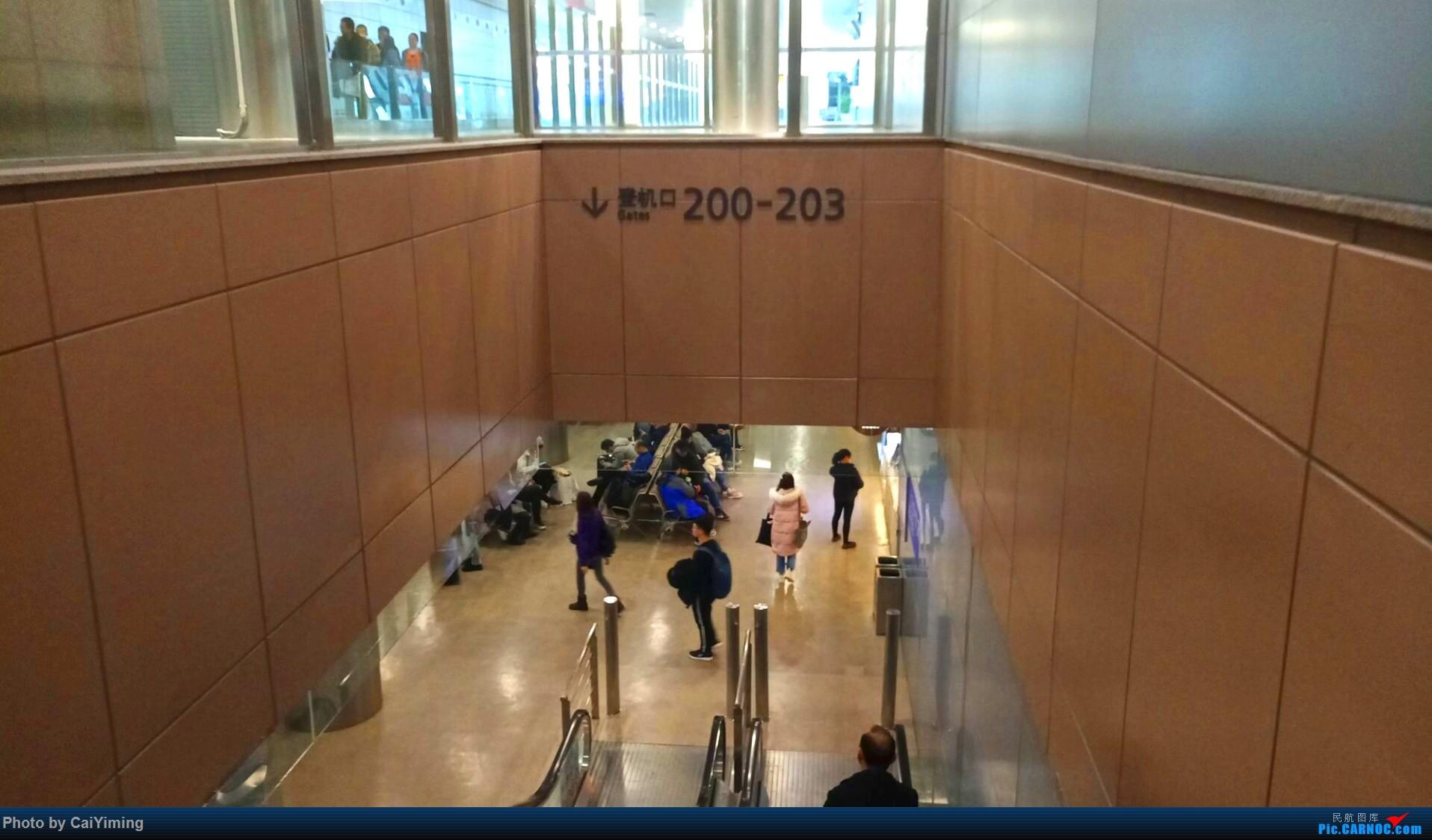Re:[原创]【人在旅途】成都-浦东-虹桥-西安-南通-成都(3U+MU空客A359体验)    中国上海浦东国际机场