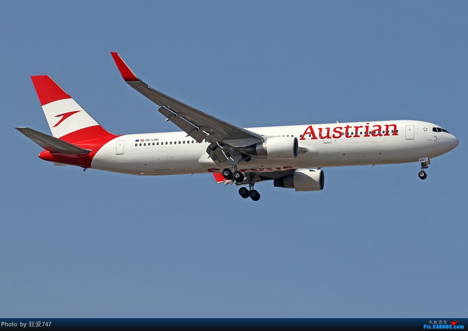 [原创]一张图:奥地利航空新装767光临首都机场 BOEING 767-300ER OE-LAW 中国北京首都国际机场