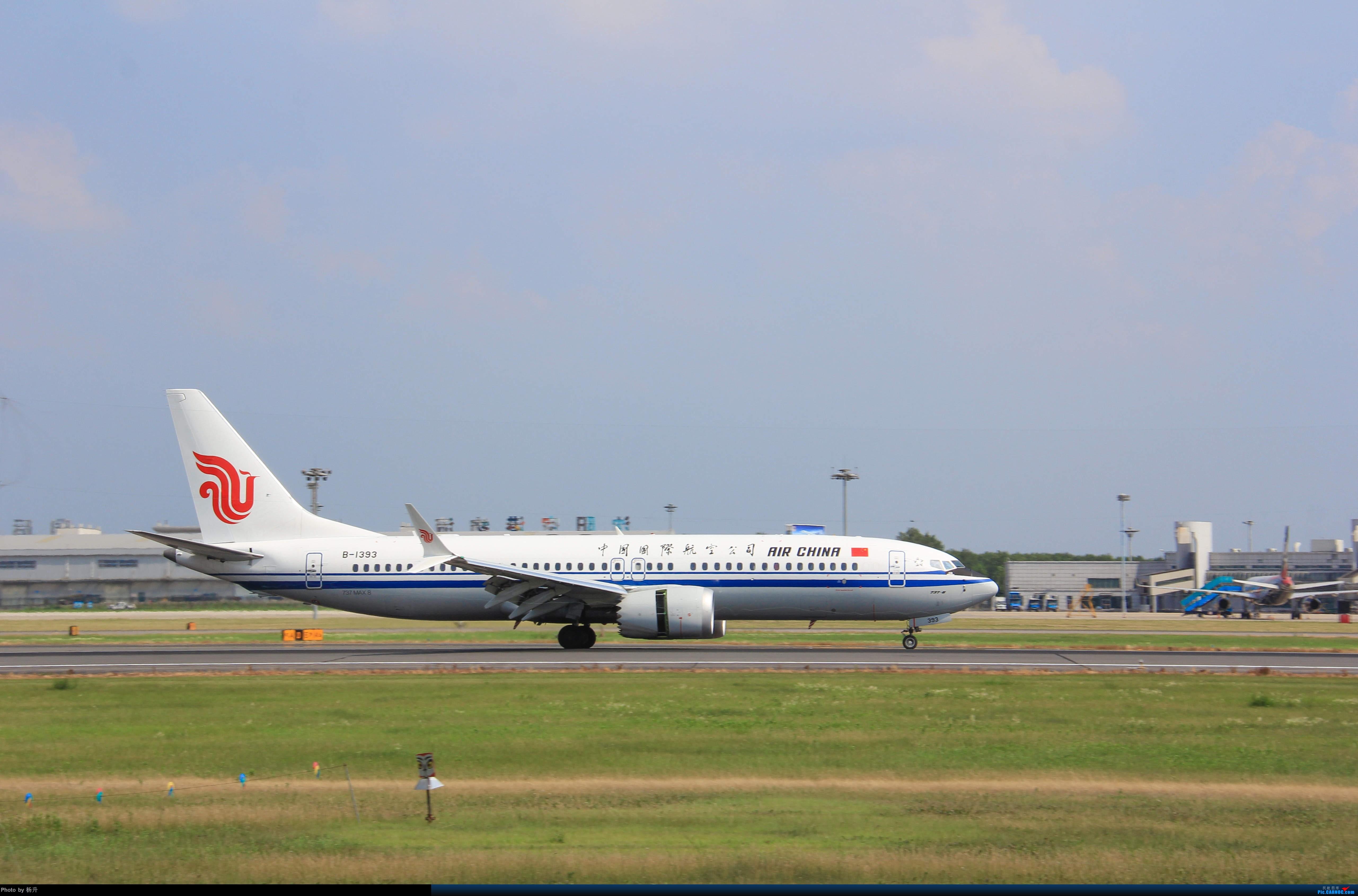 Re:[原创]【SHE】沈阳桃仙国际机场拍机 BOEING 737MAX-8 B-1393 中国沈阳桃仙国际机场