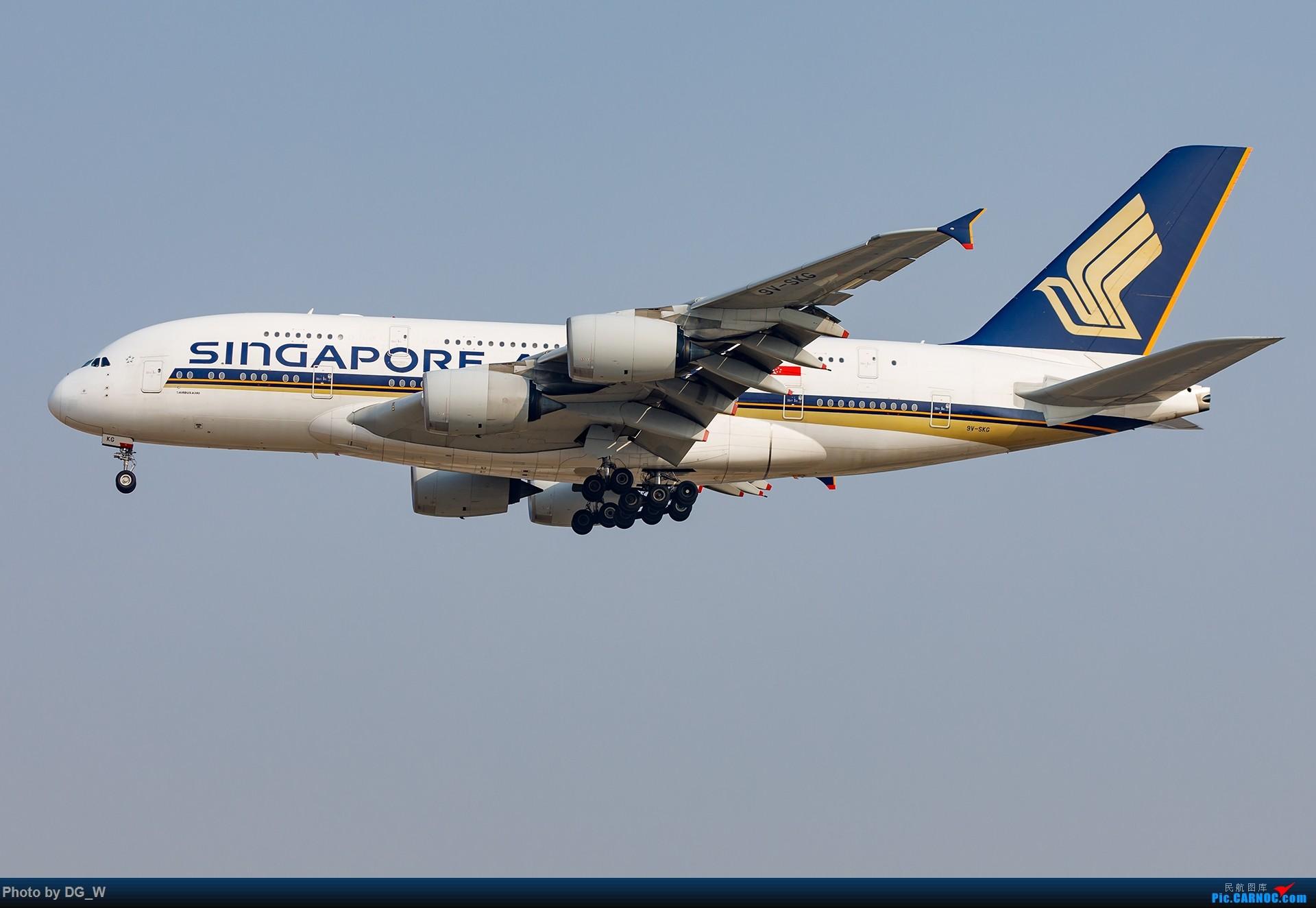 Re:[原创]【南宁飞友】一张8元机票带来的帝都之旅 AIRBUS A380-800 9V-SKG 中国北京首都国际机场