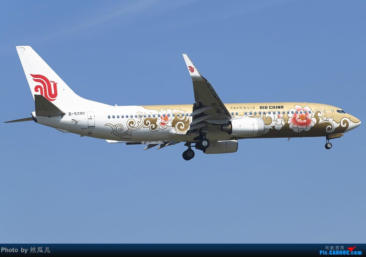 Re:[原创]【丧心病狂的丝瓜】春暖花开,瓜哥又回来了..............走一波 BOEING 737-800 B-5390 中国杭州萧山国际机场