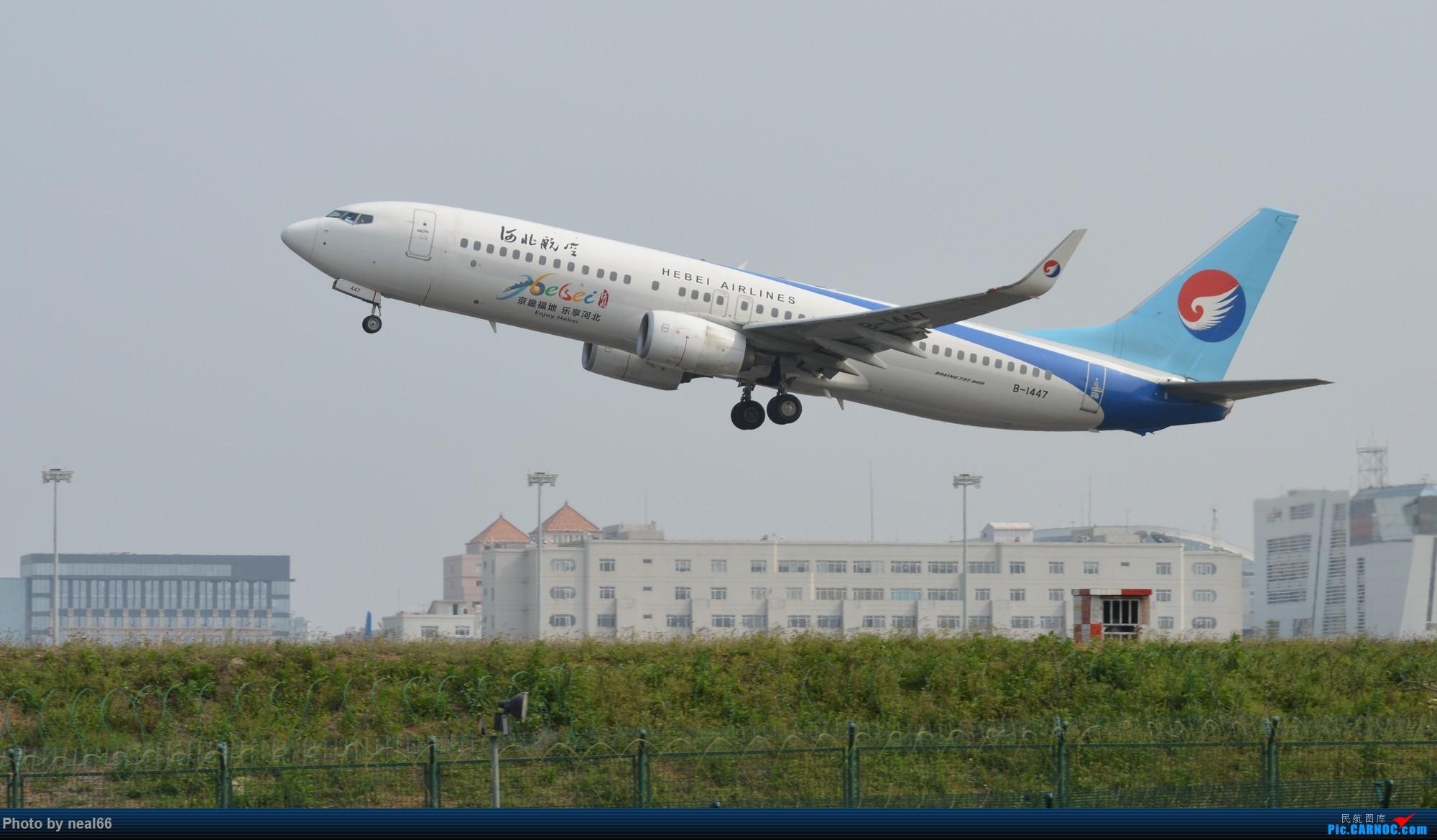 Re:[原创]厦门机场19年3月最后一天 BOEING 737-800 B-1447 中国厦门高崎国际机场