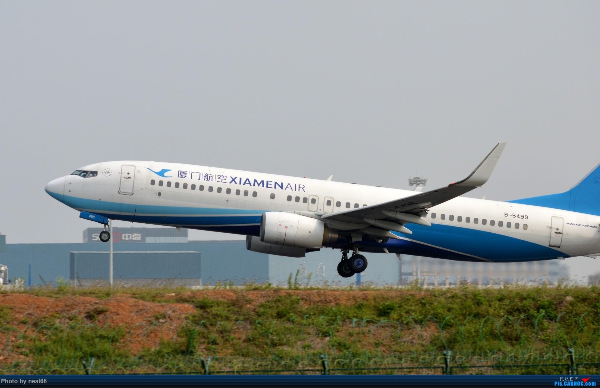 Re:[原创]厦门机场19年3月最后一天 BOEING 737-800 B-5499 中国厦门高崎国际机场