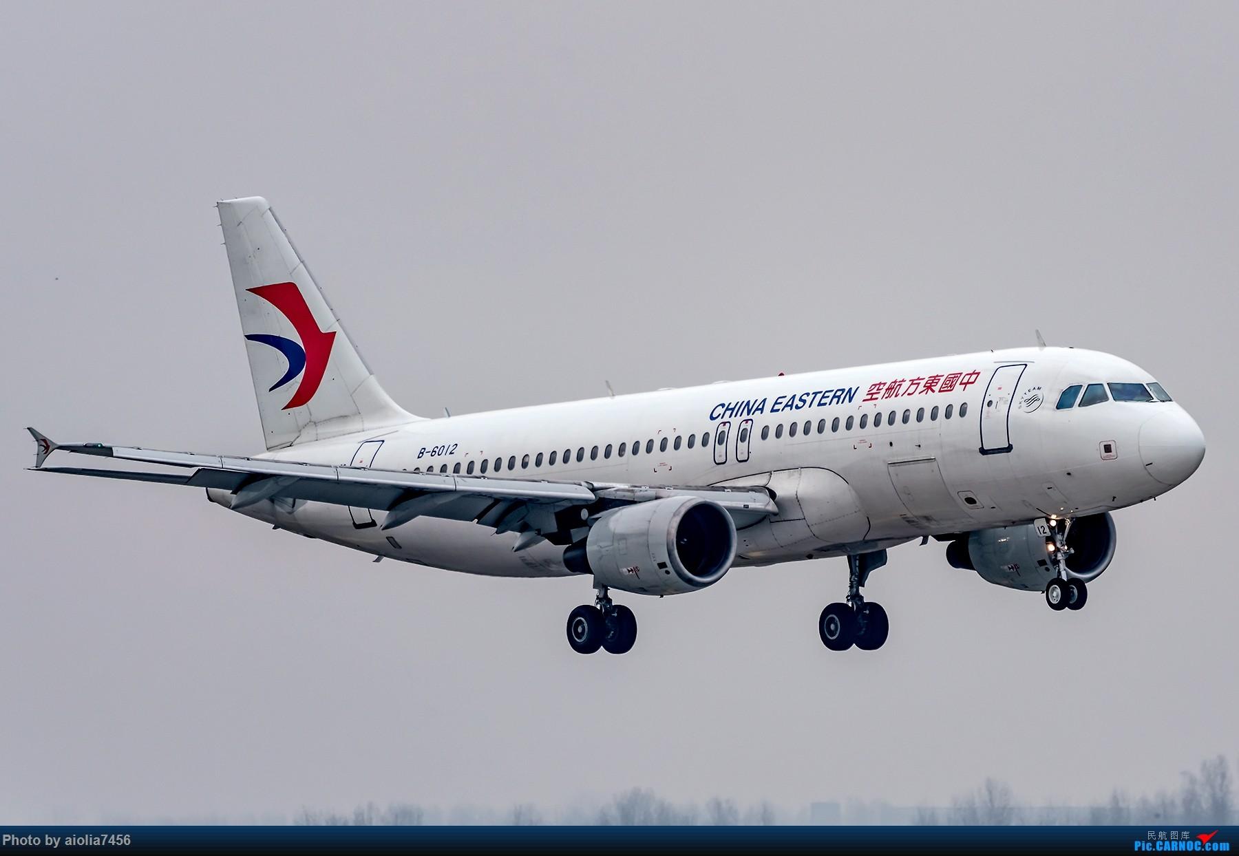 Re:[原创]{霸都打机队}儿子说,合肥为什么没有大飞机?(手动尴尬) AIRBUS A320-200 B-6012 中国合肥新桥国际机场